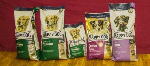 Happy Dog-9817